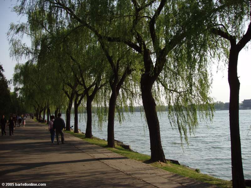 Willows line a walkway on the shore of Kunming Lake in Beijing's Summer Palace