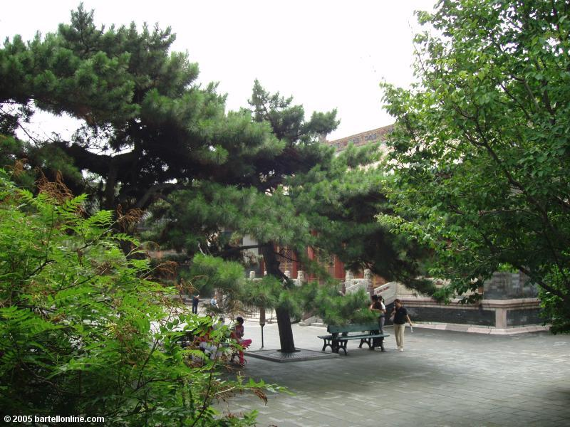 A courtyard in the Qing Imperial Palace in Shenyang, Liaoning, China