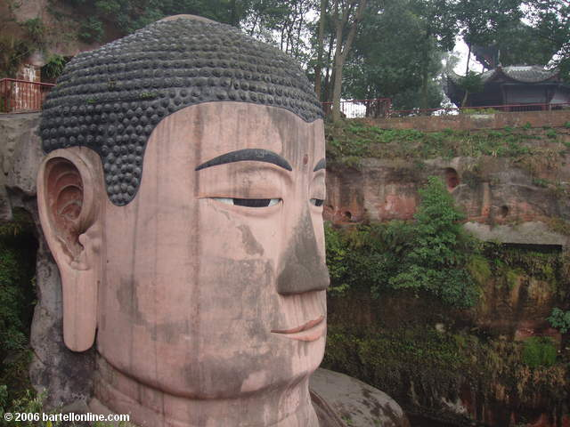 Head of the Giant Buddha in Leshan, Sichuan, China