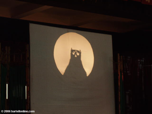 Shadow puppet owl at a Sichuan Opera performance in Chengdu, China